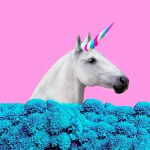 Unicorns are great for bragging rights, but they're not the only measure of success for an early investor.