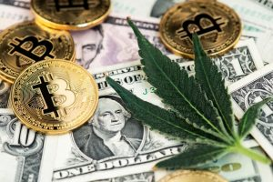 Marijuana Leaf with Bitcoin